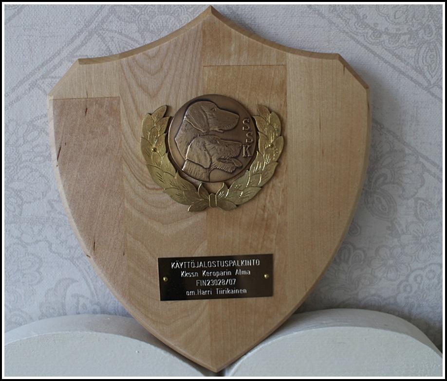 Pronssinen käyttöjalostuspalkinto